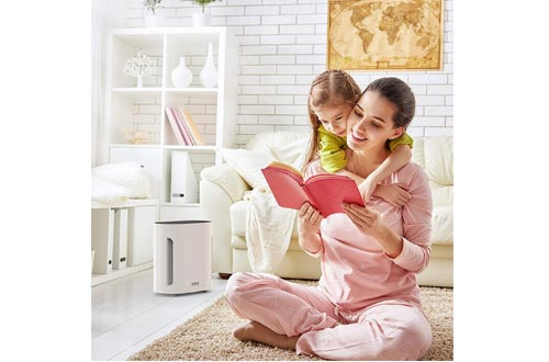 Pure Enrichment PureZone 3-in-1 Air Purifier - True HEPA Filter & UV-C Sanitizer Cleans Air, Helps Alleviate Allergies