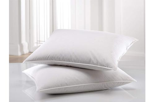 East Coast bedding 100 percent white Down Pillow