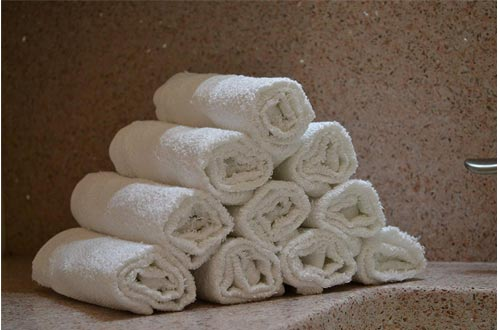 Egyptian Towels 100 Percent Cotton SALON Towel
