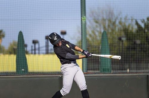Easton Adult Baseball Bat
