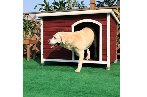 Petsfit Outdoor Dog Houses