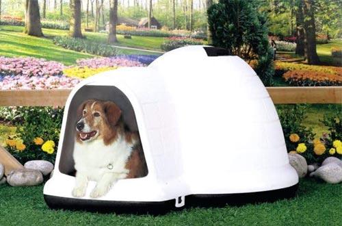 Petmate INDIGO W/MICROBAN Dog Houses