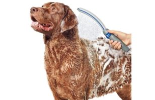 """Waterpik PPR-252 Pet Wand Pro Shower Sprayer Attachment, 13"""", for Fast and Easy at Home Dog Cleaning, Blue/Grey"""