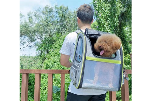 Pecute Pet Carrier Backpack, Dog Carrier Backpack, Expandable with Breathable Mesh for Small Dogs Cats Puppies