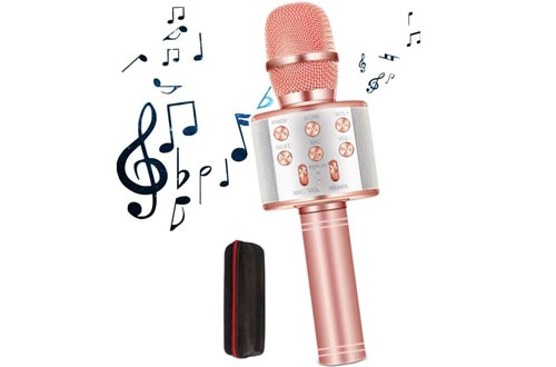 GOCTOS Karaoke Bluetooth Wireless Microphone 3 in 1 Portable Handheld Mic Speaker Machine for Company Meeting Family Kids Party
