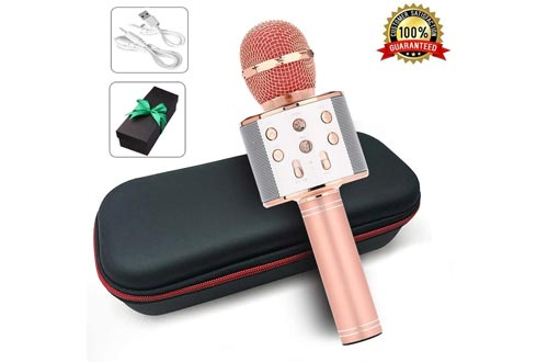 Karaoke Bluetooth Wireless Microphone 3 in 1 Portable Handheld Mic Speaker Machine for Company Meeting Family Kids Party