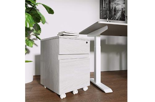 Techni Mobili Rolling 2 Drawer Vertical Filing Cabinet