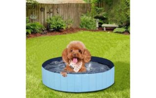 MorTime Foldable Dog Pool Portable Pet Bath Tub Large Indoor & Outdoor